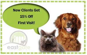 New Clients get 15% off of your intial visit to Eastgate Animal Clinic!
