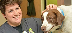 Pet health articles at Eastgate Animal Clinic