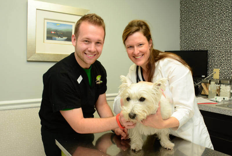 Eastgate Animal Clinic Services