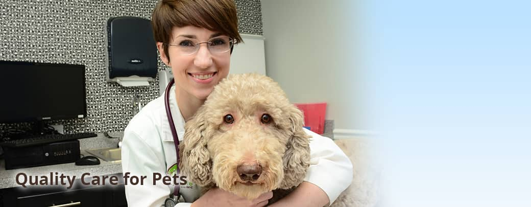 Canine Veterinary Care in Memphis
