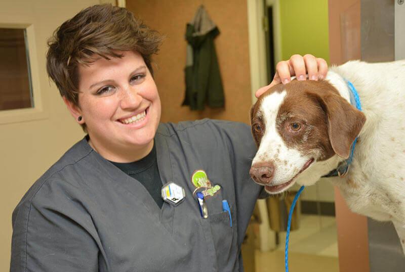 Senior Pet Wellness Services